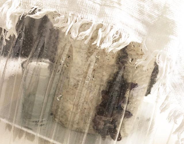きくらげ栽培キット乾燥した時の対処法3