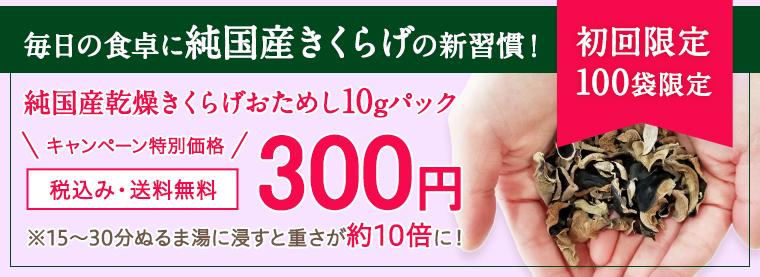 乾燥キクラゲおためし10g300円