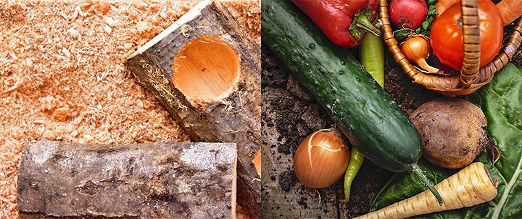 栽培の終わったきくらげの培地はカブトムシの飼育かごや野菜畑にも撒けます